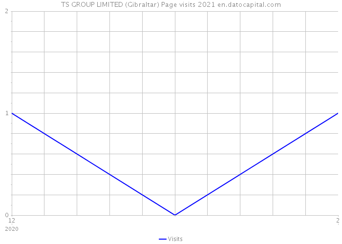 TS GROUP LIMITED (Gibraltar) Page visits 2021